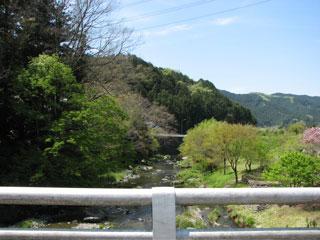 ビートで秩父ツーリング・羊山公園の芝桜